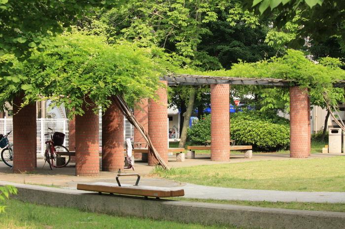 公園散策 (わたしのお気に入り)_a0214329_8114415.jpg