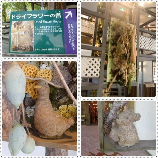 名鉄観光バスツアー 富良野_b0236665_2121633.jpg