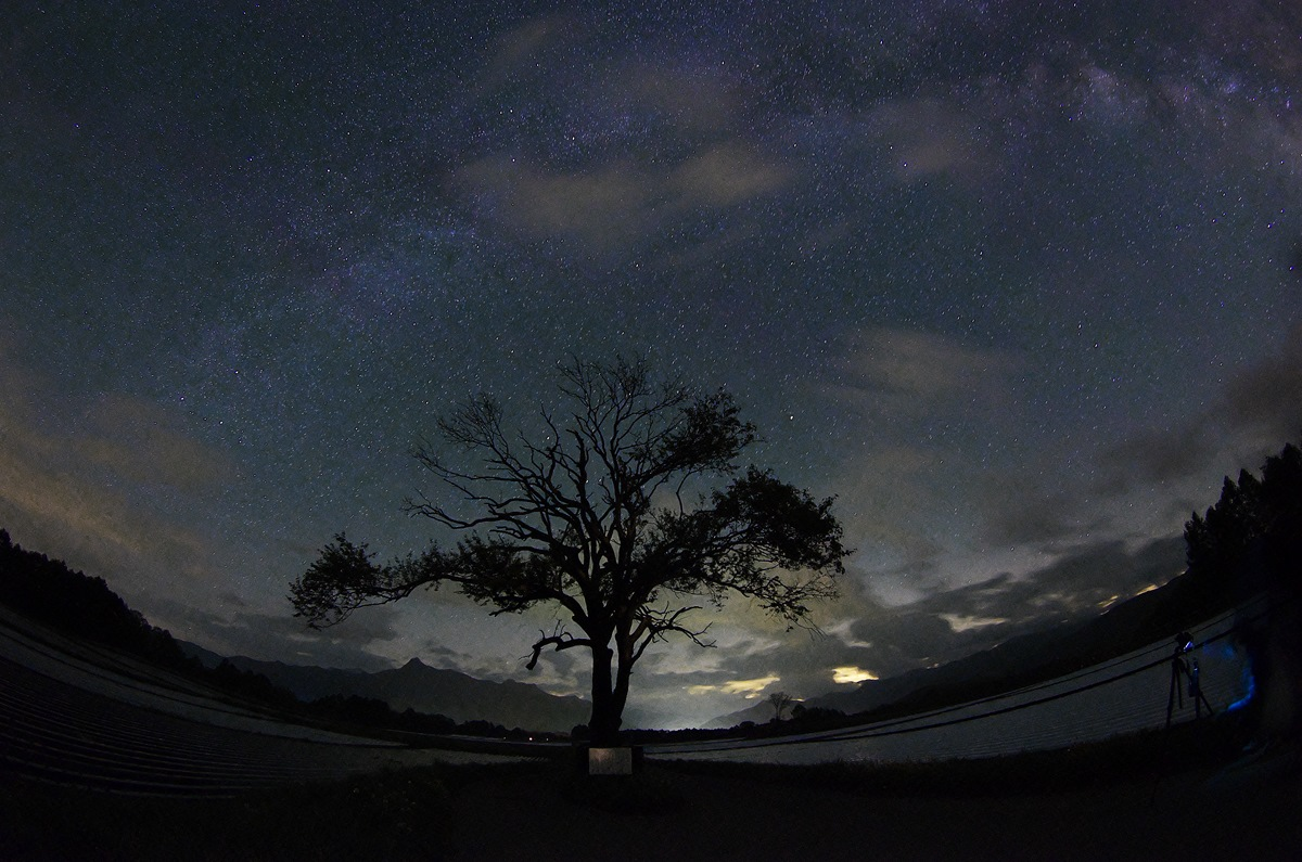 The Milky Way and a tree of yamanashi_d0147676_5164448.jpg