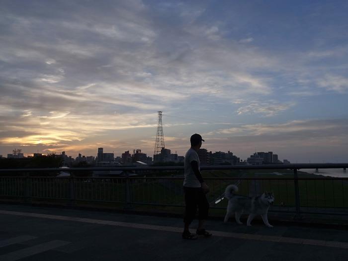 美しい空をながめる日 (*^_^*)_c0049299_17431819.jpg