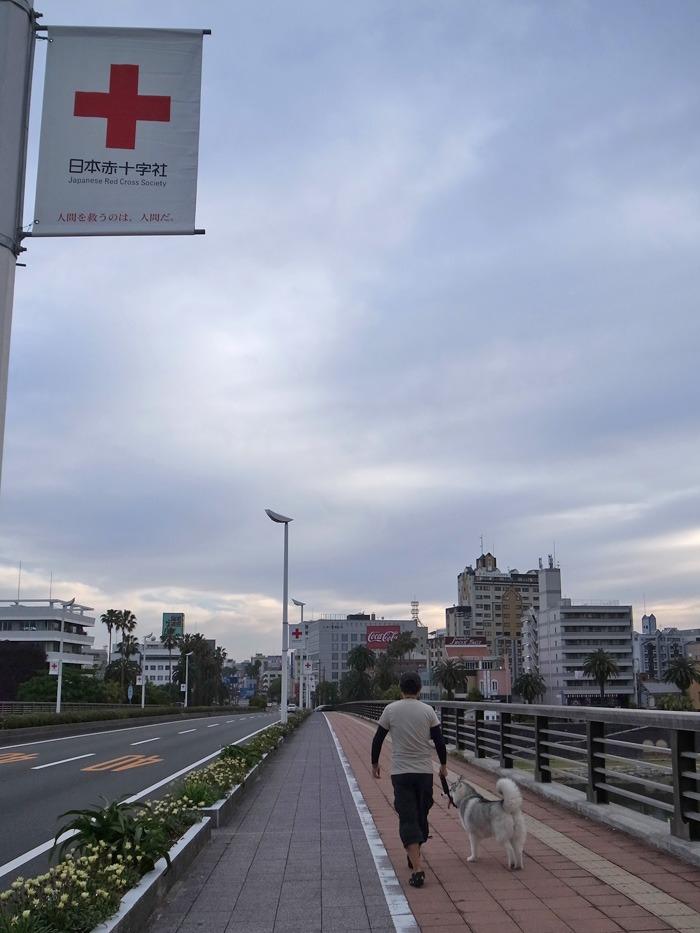美しい空をながめる日 (*^_^*)_c0049299_17524359.jpg