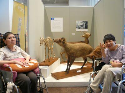 三重県総合博物館へ(^o^)/_a0154110_16583475.jpg