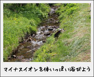 c0259934_15213971.jpg