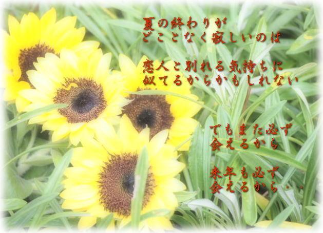 f0038347_17552985.jpg