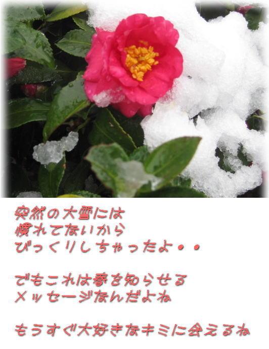 f0038347_17563161.jpg