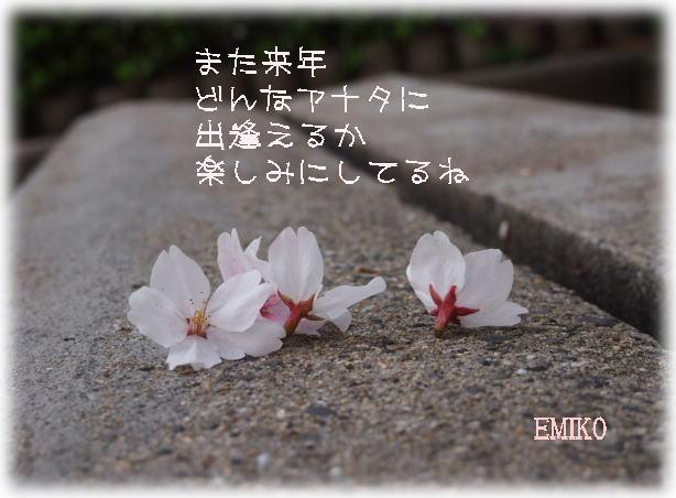 f0038347_181326.jpg