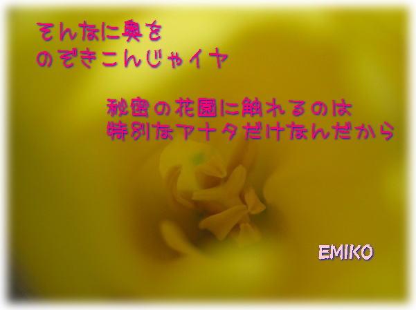 f0038347_182013.jpg