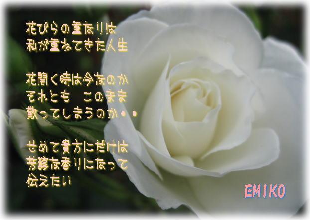 f0038347_1822373.jpg