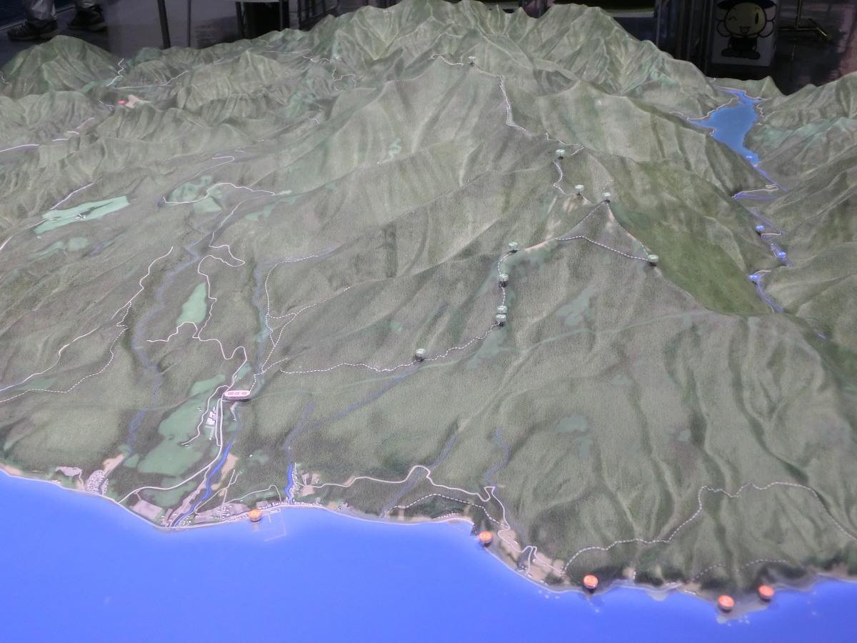 シノリガモ  アポイ岳の高山植物に逢う前に。 2014.5.25北海道04_a0146869_22224293.jpg