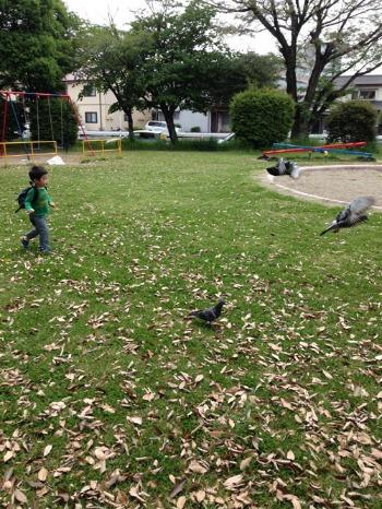 鳥と枝_c0140216_1225259.jpg