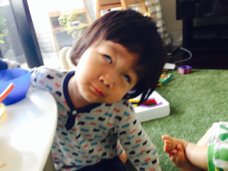 シオン2歳9ヶ月になりました_e0253026_0103815.jpg