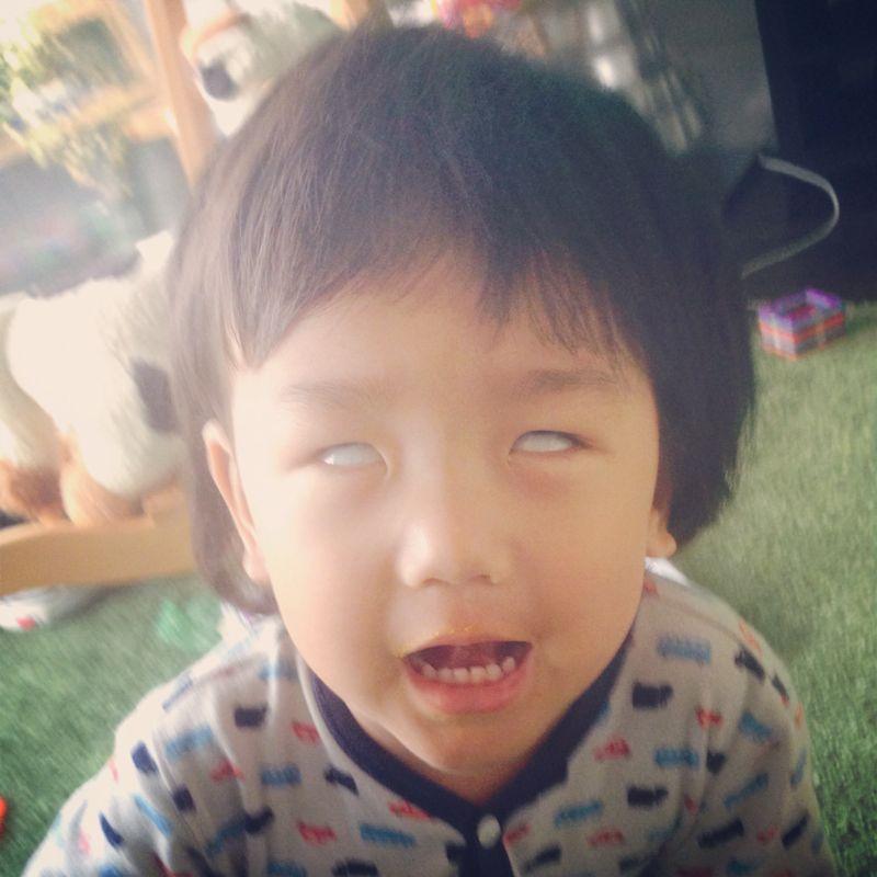 シオン2歳9ヶ月になりました_e0253026_0104067.jpg