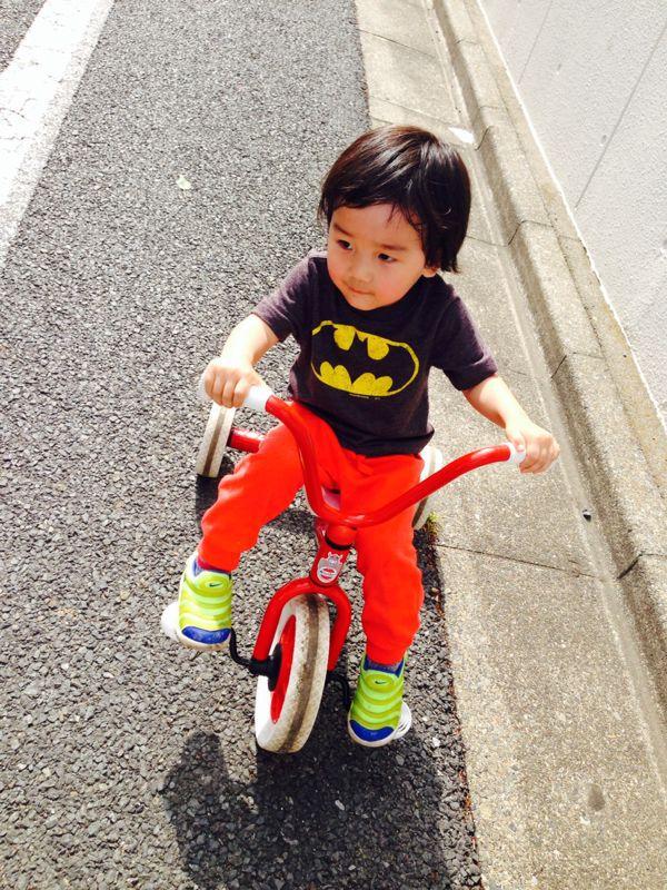 シオン2歳9ヶ月になりました_e0253026_0104749.jpg