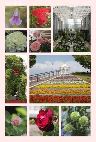 淡路奇跡の植物園_f0292335_14581390.jpg
