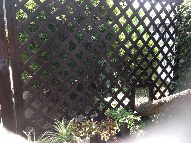 ラティス塗装他_f0031037_19471211.jpg