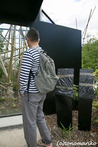糸井さんの「パリの動物園とオレたちの歯」 パリ4日目_c0024345_17115864.jpg