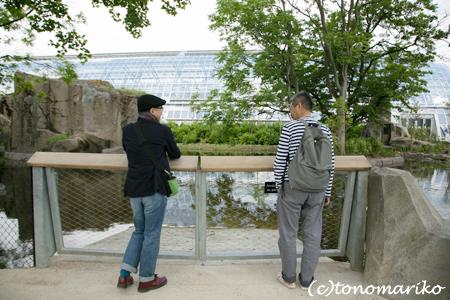 糸井さんの「パリの動物園とオレたちの歯」 パリ4日目_c0024345_17122996.jpg