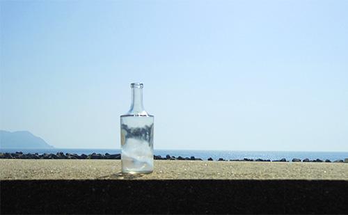 瓶のその後_a0180552_0191960.jpg