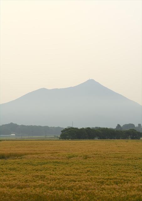 小貝川ふれあい公園 1_f0018464_1201867.jpg