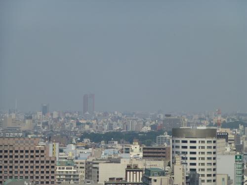 ブルーインパルスが東京上空に!_c0100865_09485004.jpg