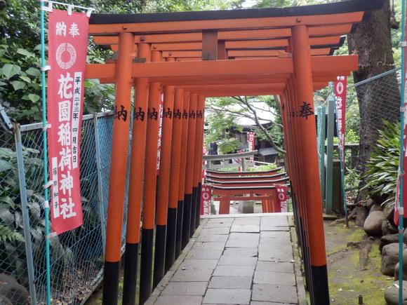 お江戸散策(上野の杜、、続)、、、3_e0292172_1459433.jpg