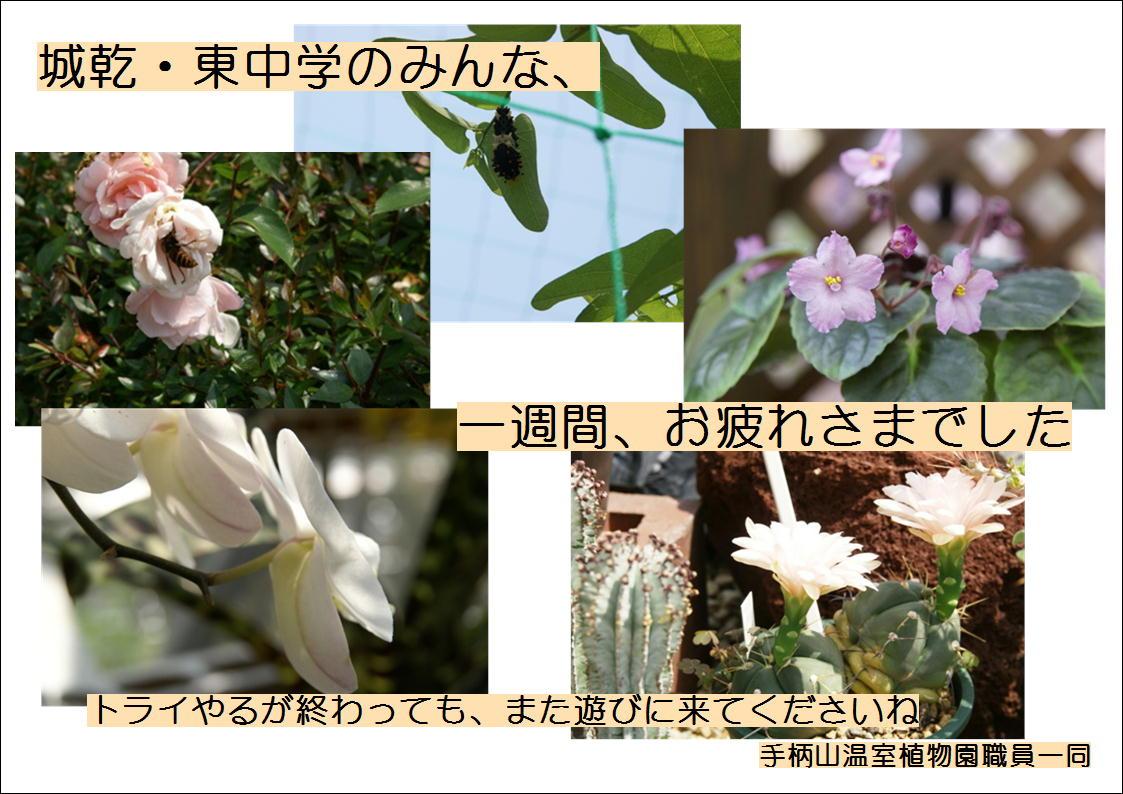 f0203094_1503734.jpg