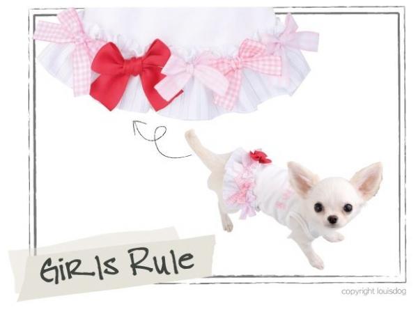 Louis dogの新作が入荷しました!_d0060413_1148857.jpg