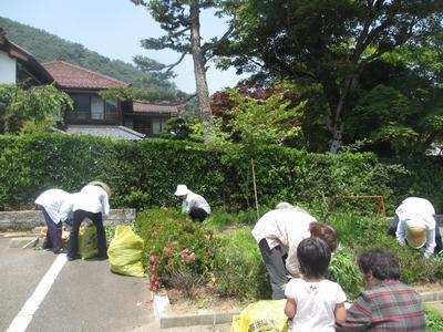 草刈り_f0289632_1181293.jpg
