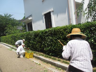 草刈り_f0289632_119144.jpg