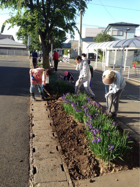 町内の花壇と安全安心なまちづくり_b0199244_23381814.jpg
