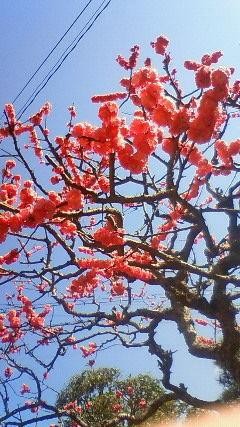 春分の日_f0349957_22254516.jpg