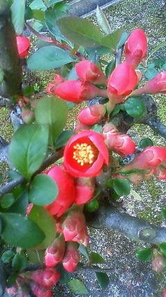 春分の日_f0349957_22254638.jpg