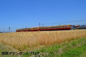 地鉄沿線を撮ってみました!黄金の景色編_a0243562_15423934.jpg