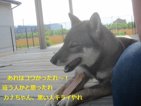 f0143123_2195172.jpg