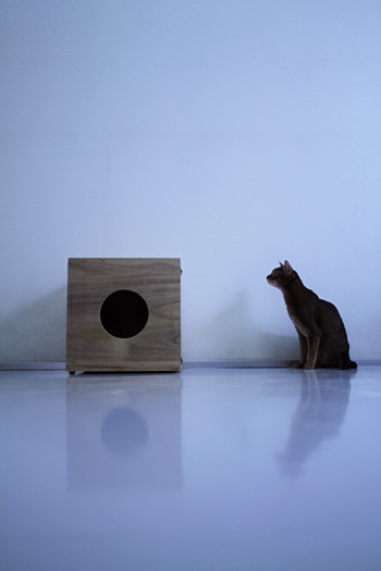 [猫的]リフォーム_e0090124_22542380.jpg