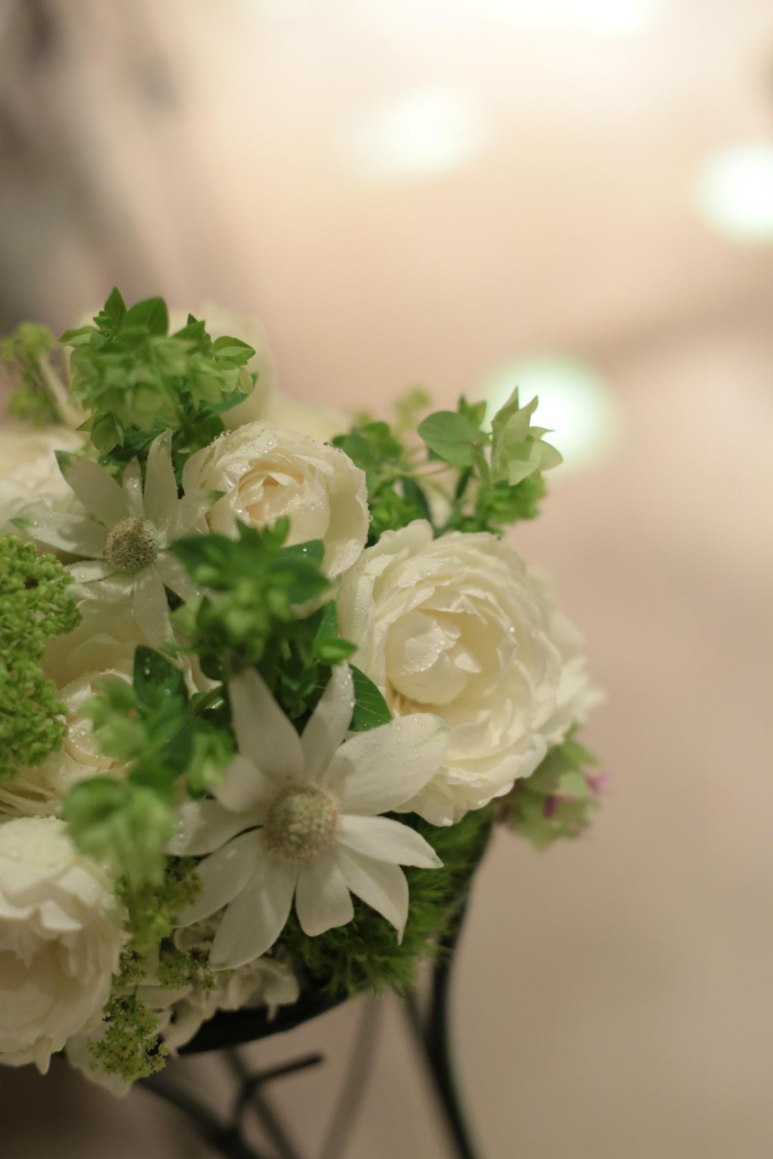 新郎新婦様からのメール 6月の花嫁はうさぎさん1_a0042928_12341858.jpg