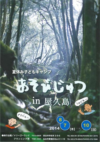 あそびじゅつin屋久島_b0219235_12111843.jpg