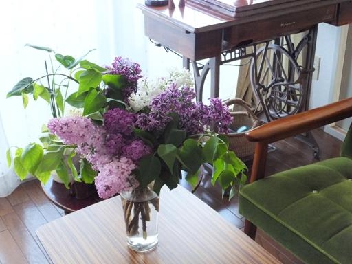 札幌の木・ライラックがいい香り!_d0246960_21171688.jpg