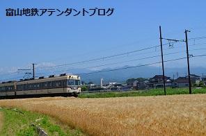 地鉄沿線を撮ってみました!黄金の景色編_a0243562_15071546.jpg