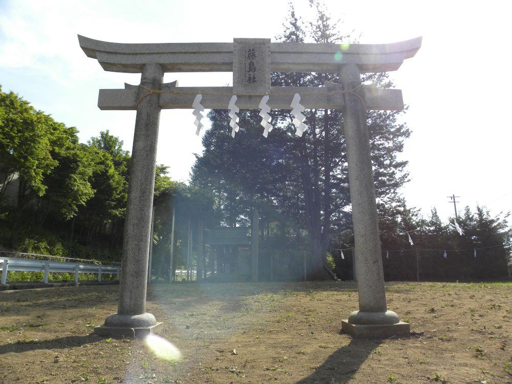 諏訪大社・御田植祭_b0329588_17034057.jpg