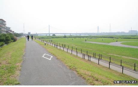 ◇◆◇多摩川大橋緑地◆◇◆_f0322193_9363715.jpg