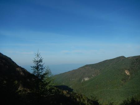 登山道情報_e0120896_75045.jpg