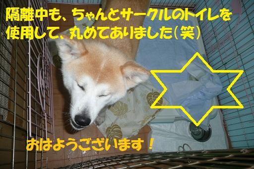 f0121712_874769.jpg