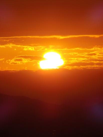 早朝の「緑の世界」_a0125419_06034680.jpg