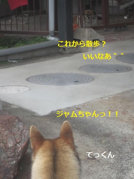 f0143123_2033578.jpg
