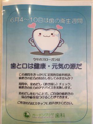 歯の衛生週間_c0204724_20363718.jpg