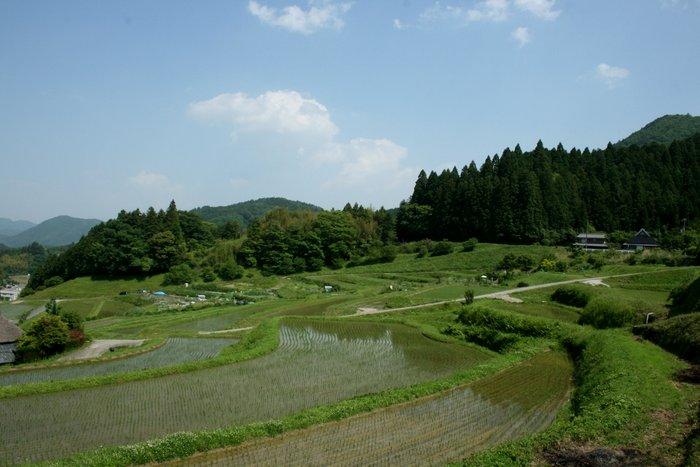 季節が感じられる場所~長谷の棚田_b0168840_23105983.jpg