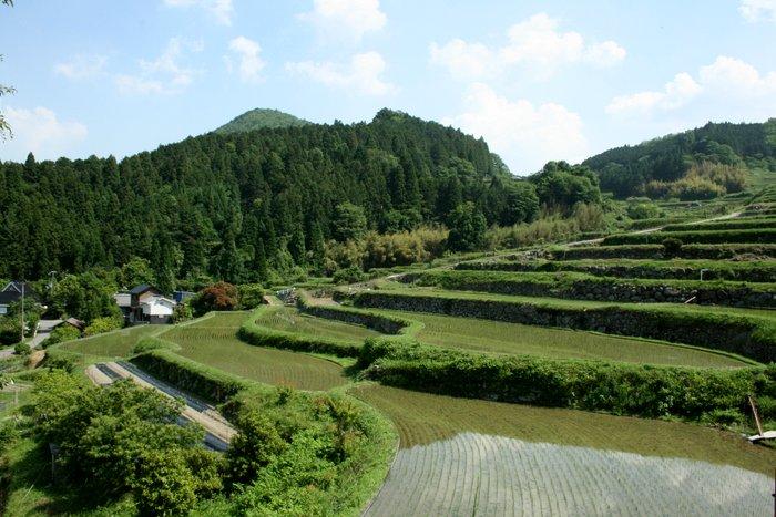 季節が感じられる場所~長谷の棚田_b0168840_23154443.jpg