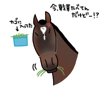 栗東トレセンに行こう!〜角居勝彦厩舎編〜_a0093189_034270.jpg