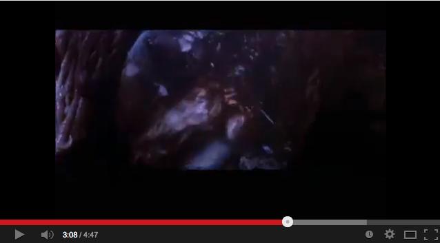 「天国の証明=プルーフオブヘブン」2:「ブレインストーム」は「死後の世界」の映画だった!?_e0171614_17204828.png